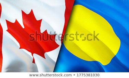 Canadá Palau bandeiras quebra-cabeça isolado branco Foto stock © Istanbul2009