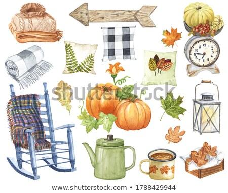 the natural pumpkin stock photo © oleksandro