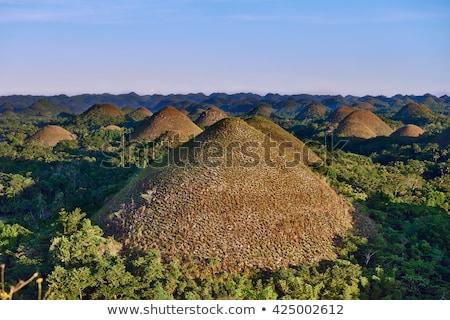 Chocolate Hills Stock photo © Kacpura