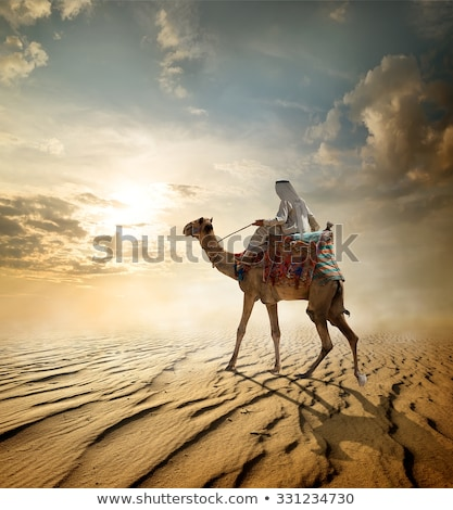 Camel Rider Stock fotó © givaga