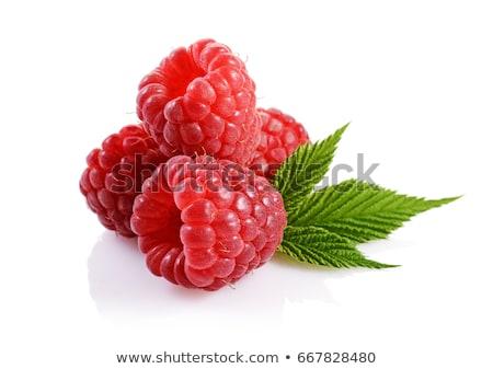 een · vers · framboos · Rood · kleur · zoete - stockfoto © digifoodstock