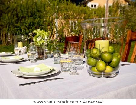 Nice extérieur table été jour Photo stock © phila54