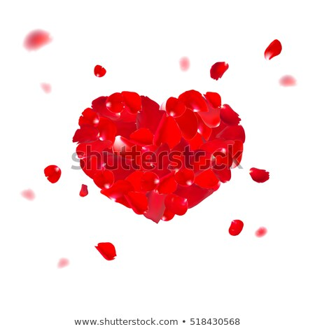 red valentine heart made with rose flower eps 10 stock photo © beholdereye
