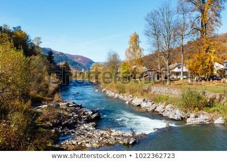 Village in Carpathians mountains, Ukraine Stock photo © joyr