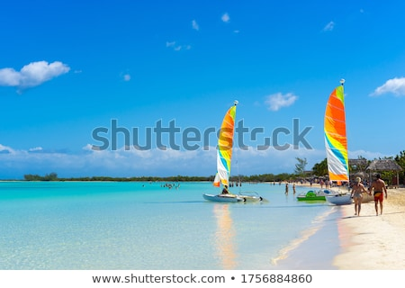 view from above to a busy beach coast of the atlantic ocean stock photo © vlad_star