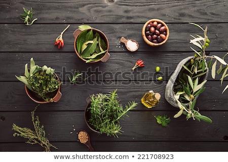 Fraîches sauge laisse italien herbes pétrolières Photo stock © Naltik