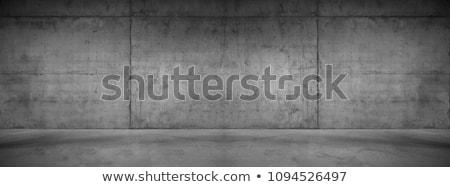 пусто конкретные стены мнение текстуры Сток-фото © LightFieldStudios