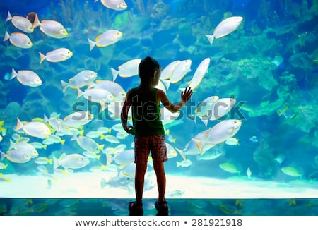 Many children visiting the zoo Stock photo © bluering