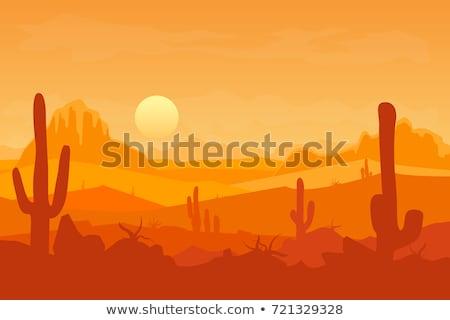 Cartoon · природы · пейзаж · пустыне · изолированный · белый - Сток-фото © bluering