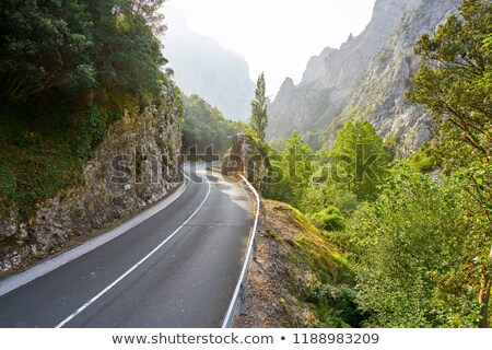 Stock photo: N-621 road near Deva river in Cantabria Spain