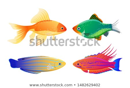Nadir deniz karikatür örnek yeşil Stok fotoğraf © robuart