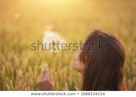 девушки · позируют · области · закат · красивой · блондинка - Сток-фото © artfotodima