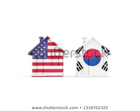 Iki evler bayraklar Amerika Birleşik Devletleri Güney Kore yalıtılmış Stok fotoğraf © MikhailMishchenko