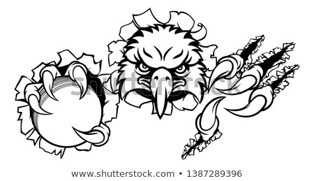 Foto stock: Eagle Cricket Cartoon Mascot Ripping Background