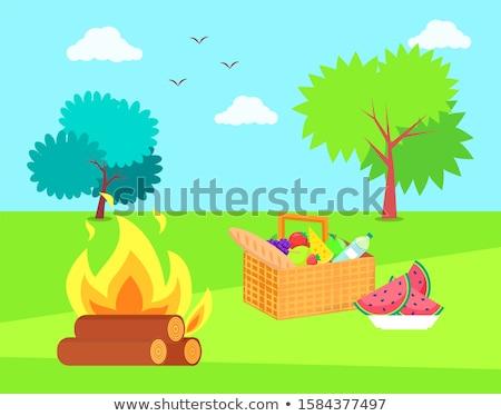 şenlik ateşi sepet elma meyve vektör konteyner Stok fotoğraf © robuart