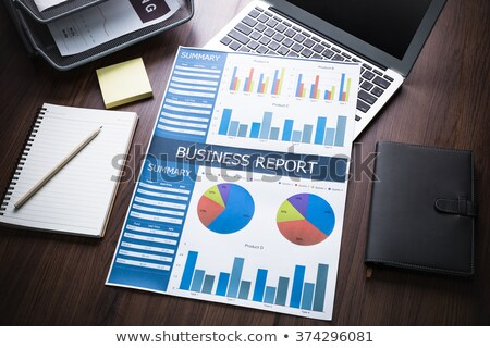 Financial Statement Analysis, Statistical Graphics Stock photo © robuart