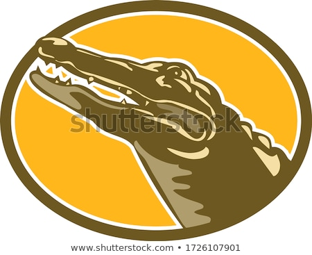 Alligator hoofd ovaal stijl retro Stockfoto © patrimonio