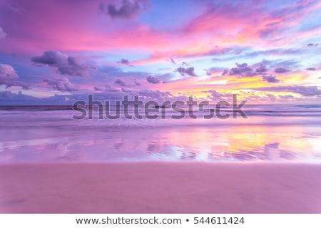 emberek · naplemente · illusztráció · természet · jókedv · napfelkelte - stock fotó © magann
