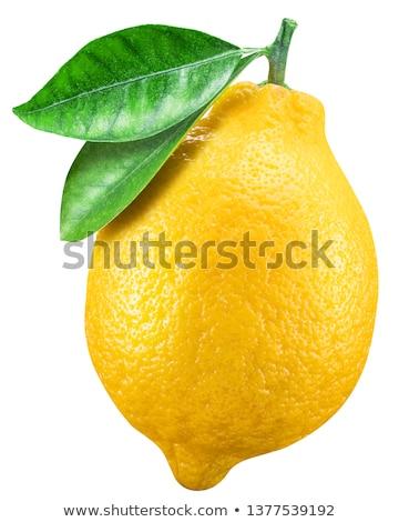 One Citrus Lemon Stock photo © lovleah
