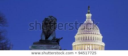 Foto stock: Leão · estátua · edifício · Washington · DC · cidade · arquitetura
