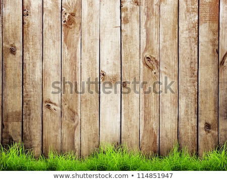 wooden fence in the grassland stock photo © bbbar