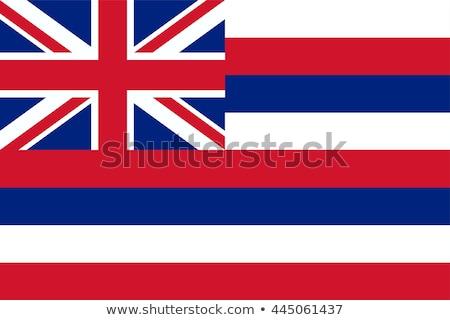 Hawaii · zászló · nagy · illusztráció · USA · szalag - stock fotó © tony4urban