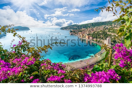 Aerial view of the region of Provence in France  stock photo © frank11