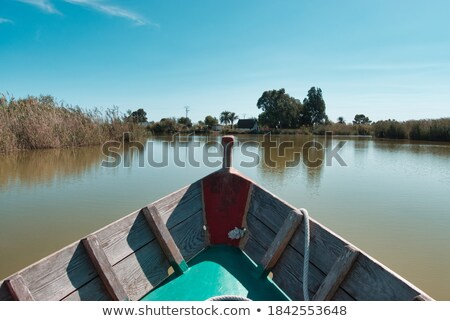 Blue boat sailing in Albufera lake of Valencia stock photo © lunamarina