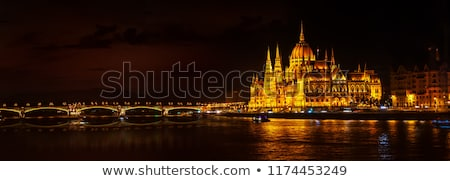 The  Parliament in Budapest by night Stock photo © jakatics