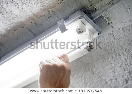 флуоресцентный лампа энергии компактный коричневый Сток-фото © Stocksnapper