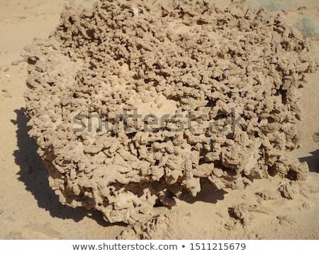 Rózsa Szahara ásvány különleges absztrakt sivatag Stock fotó © jonnysek