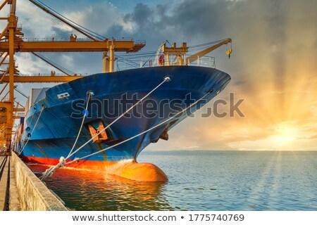 грузовое · судно · Восход · морем · лет · силуэта · волны - Сток-фото © luckyraccoon