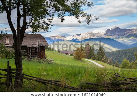 view over the meadows and agriculture in the dolomite alpes nea stock photo © meinzahn