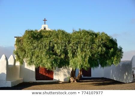 beautiful chapel in Wine area la Geria, Lanzarote. Stock photo © meinzahn