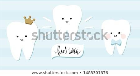 The first teeth. Stock photo © grechka333