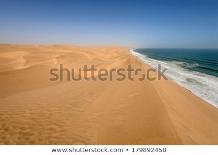 Coastline in the Namib desert Stock photo © dirkr