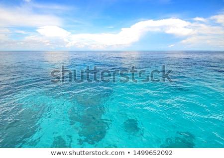 landscape sea stock photo © oleksandro