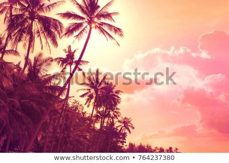 puesta · de · sol · playa · phuket · Tailandia · cielo · agua - foto stock © romitasromala