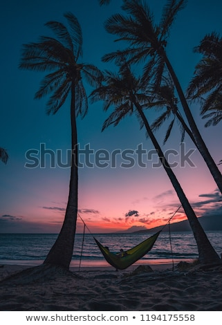 sunset in el nido palawan   philippines stock photo © fazon1