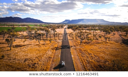 道路 オーストラリア 長い ストレート 道路 リモート ストックフォト © roboriginal