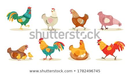 グループ 食品 背景 動物 グラフィック 影 ストックフォト © bluering