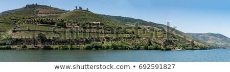 manzara · fotoğraf · görmek · güzel · liman · şarap - stok fotoğraf © homydesign