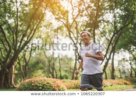 Asya · yaşlı · adam · park · portre · beyaz · saçlı · kıdemli - stok fotoğraf © szefei