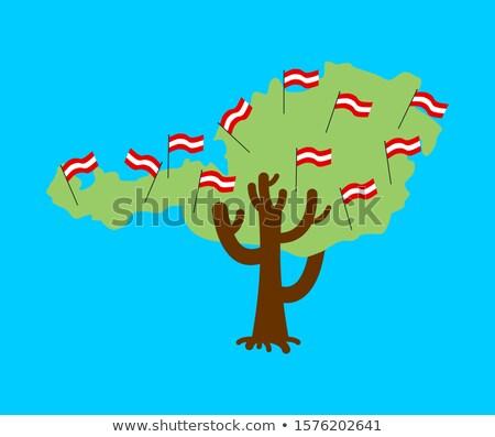Patriótico árvore Áustria mapa bandeira político Foto stock © popaukropa