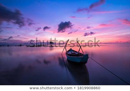 beautiful sunset in nature stock photo © dotshock