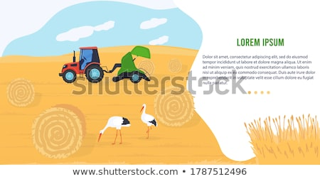 Rolniczy maszyn ikona cartoon wektora banner Zdjęcia stock © robuart