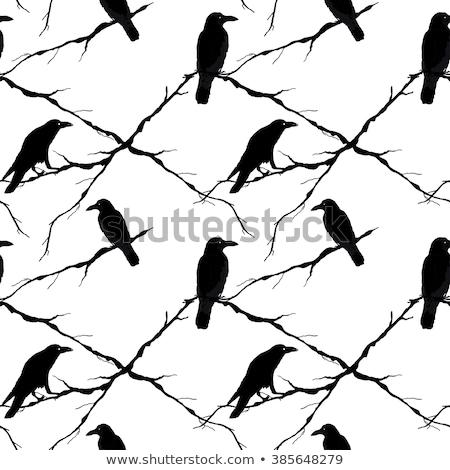 árvore · vetor · aves · primavera · edifício - foto stock © loopall