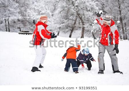 pai · crianças · bola · de · neve · lutar · inverno · paisagem - foto stock © monkey_business