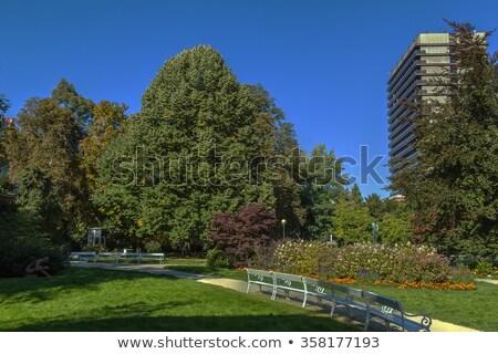 flowerbed in the park, Karlovy Vary Stock photo © borisb17
