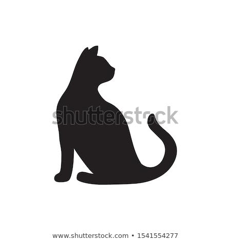 teknős · sziluett · forma · vadállat · fekete · ikon - stock fotó © krustovin